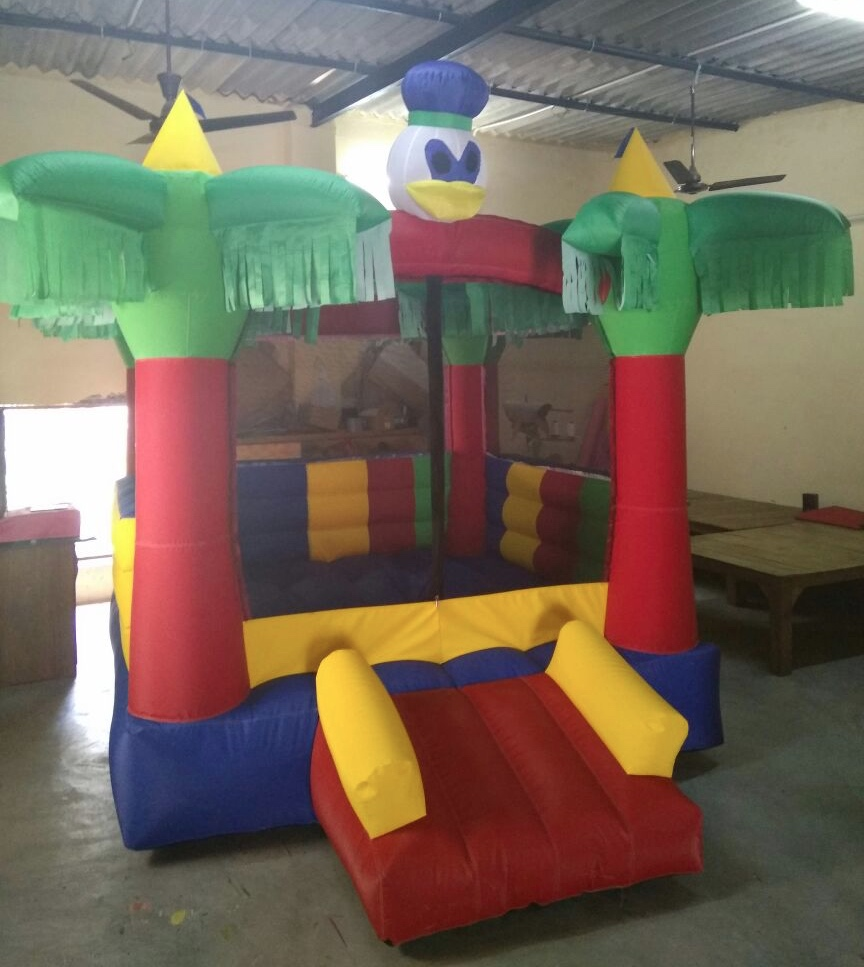 Bouncy for birthday party and corporate events