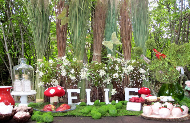 tinker bell theme party planner, tinker bell theme party ideas, tinker bell theme party organizers, tinker bell theme party decorators